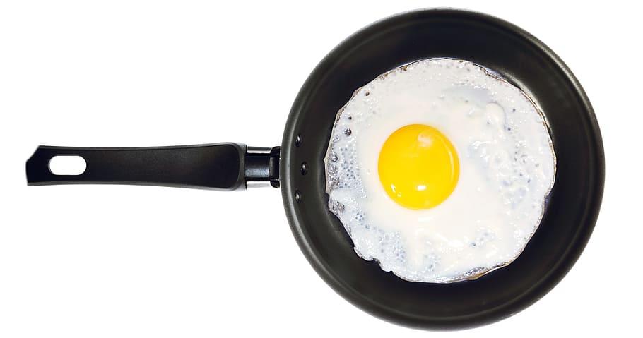 تخم مرغ منابع پروتئین