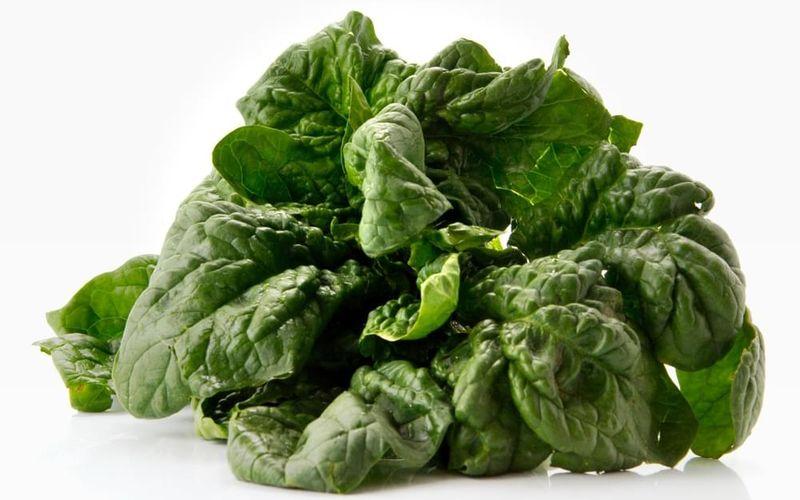اسفناج مصرف سبزیجات