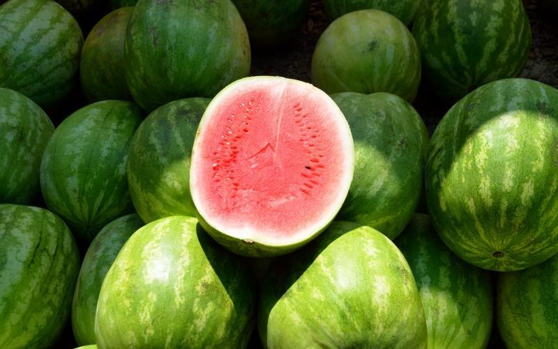 تشخیص هندوانه رسیده